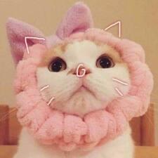 Profil utilisateur de 贾美宁