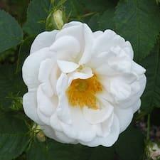 Rose Ann User Profile