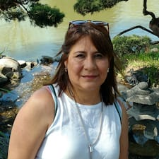 Graciela Lourdes User Profile