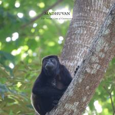Madhuvan User Profile
