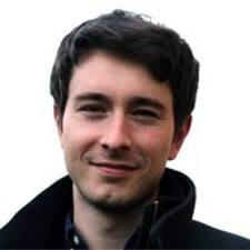 Dávid User Profile
