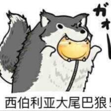 腾 User Profile