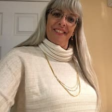 Profil Pengguna Lori