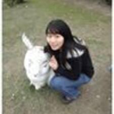 Hsin-Mien User Profile