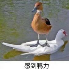 Nutzerprofil von Wang
