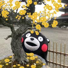 Nutzerprofil von 霞飞