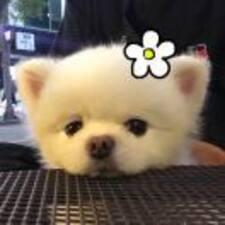 Profil utilisateur de 云珞无心