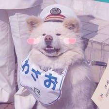 Perfil do usuário de 风胥