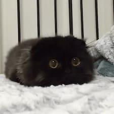 猫饼 Brukerprofil
