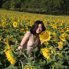 Profil utilisateur de Dongdong