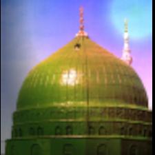 Mohammad Shoayb用戶個人資料