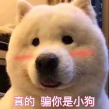 Perfil de usuario de 楷杰