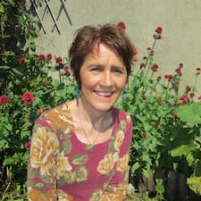 Noëlle User Profile
