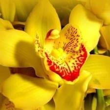 Orchidea è un Superhost.