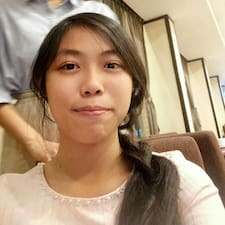 Chaoyin User Profile