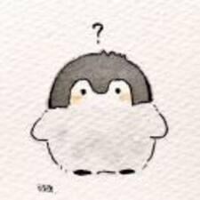 鸽 Brugerprofil