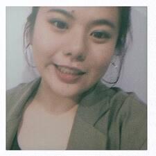 莹 Ying User Profile