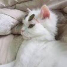 雨婷 User Profile