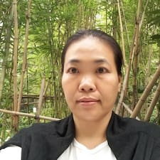 Shuyi User Profile