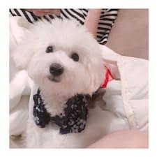 韩妮 - Uživatelský profil