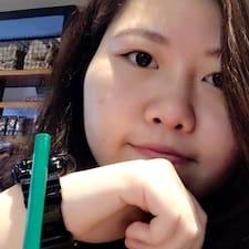 Profil Pengguna Lan