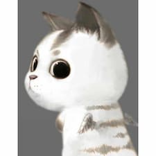 Profil utilisateur de 猫猫