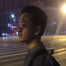 通文 felhasználói profilja