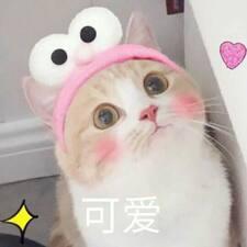Profil utilisateur de 未円