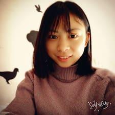柳琴 Profile ng User