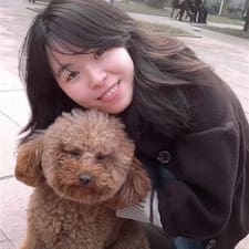 Lishu User Profile