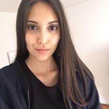 Profil Pengguna Liesa