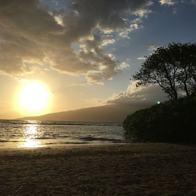 Guidebook for Maui