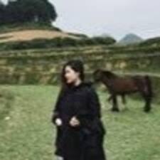 Minh Hoaさんのプロフィール