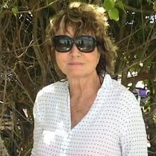 Arlette User Profile