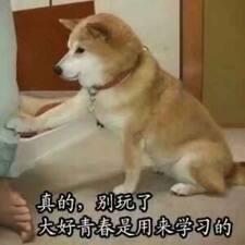 Profil utilisateur de 凡舒