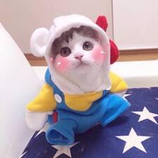 XiaoQian User Profile