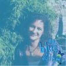 Noeli User Profile