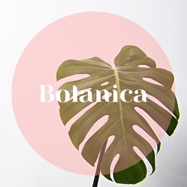 Botanica's Guide to Bali
