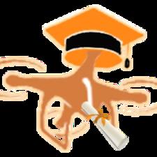 Drone Brukerprofil