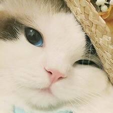 Профиль пользователя 娜娜