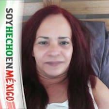 Profil Pengguna Rosa Sylvia