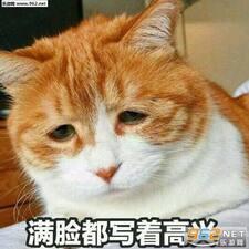 Профиль пользователя 珊珊