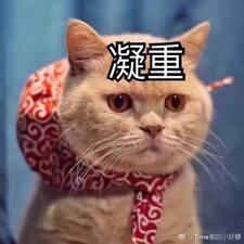 张磊 User Profile