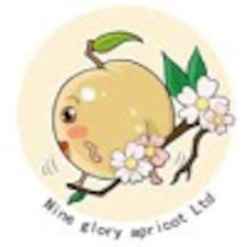 Perfil do usuário de Rui