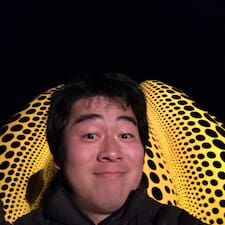 进一步了解Yohei