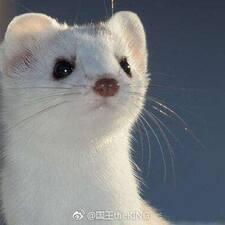 Xiaonu User Profile