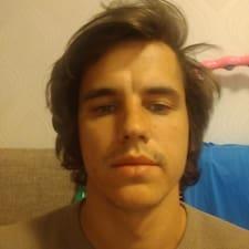Profil Pengguna Viktor