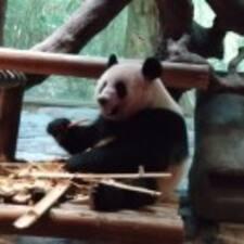 Xing felhasználói profilja
