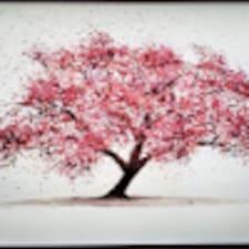 American Sakura Brugerprofil