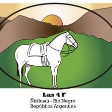 Perfil do utilizador de Las 4 F Ñirihuau